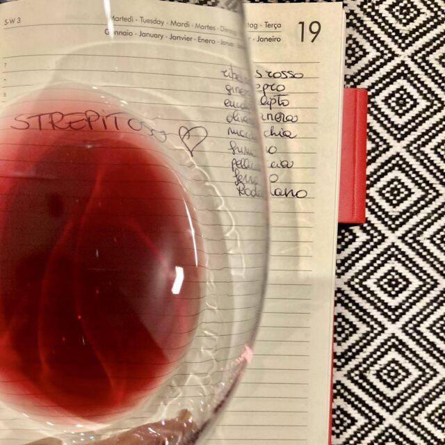 Può capitare che presi dalla voglia di bereun bicchiere di vino, si saltino due step importantissimi ossia la vista e l'olfatto.