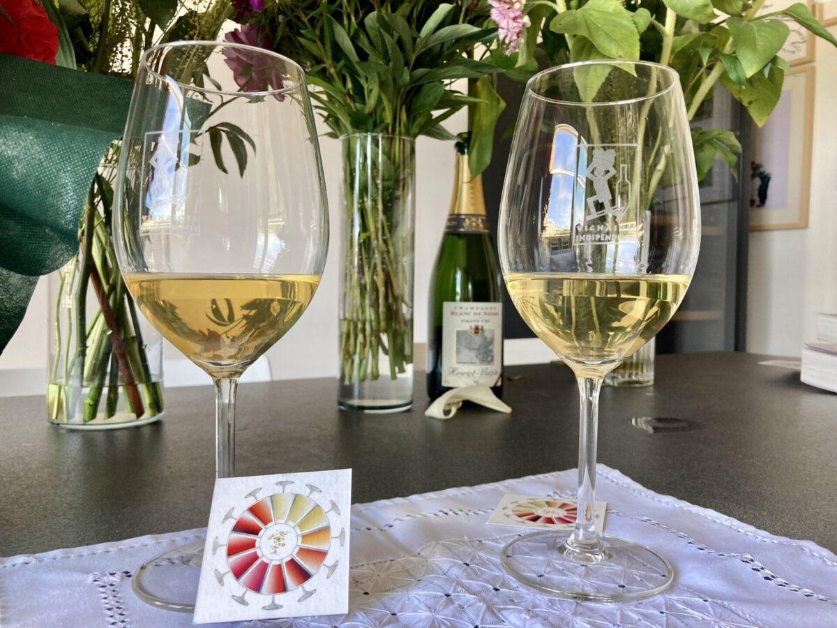 Può capitare che presi dalla voglia di bere un bicchiere di vino si saltino duestepimportantissimi, lavistae l'olfatto.